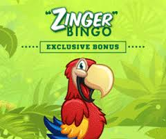 Zinger Bingo Has Something Special for Your Every Day This Month